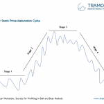 The Stock Price Maturation Cycle